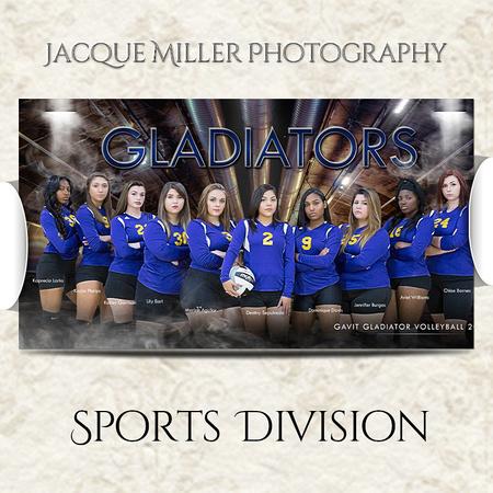 Team Banner_Volleyball